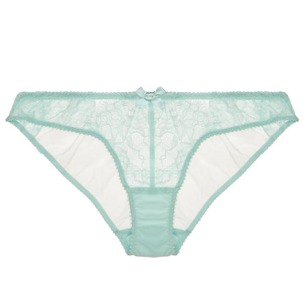 L'Agent Idalia Mini Brief