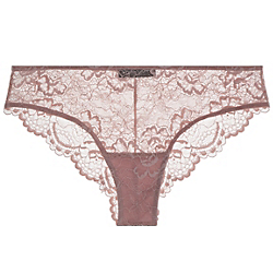 All Lace Brief